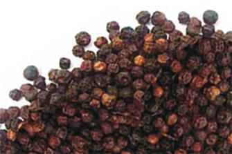 Poivre noir entier en grains 1 kilo